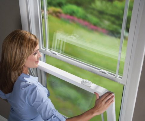 Replacement Window Styles: Single Hung Windows