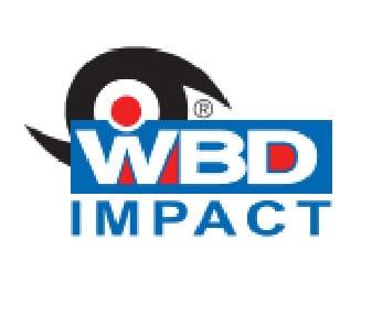 Karoly Windows and Doors WBD Impact Logo Replacement Front Doors Entry Door Clearwater Palm Harbor Largo Tampa St Petersburg